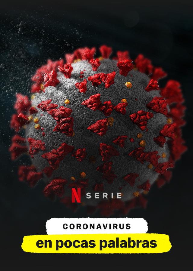 Coronavirus, en pocas palabras